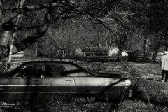 Memories of his father's Plymouth Fury II