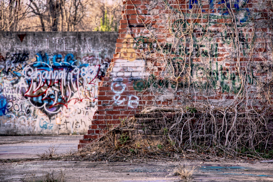 vines growing over foreground red brick wall, graffiti on front and back walls, woods in background, old mill,
